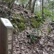 まち歩き北0862 京都一周トレイル 北山西部コース 61