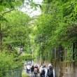 2012年5/13(日)『萬塾』第2回講座 「小関越えをじっくり歩いて勉強」が開催されました