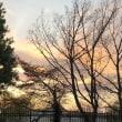 綺麗な夕焼けでした!