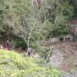 6 宮島(博打尾~大休~包ヶ浦)登山(続き)  砲台跡地へ