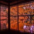 2017 京都 秋の陣 瑠璃光院