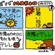 7月15日「ビバMARIO.479/お茶」
