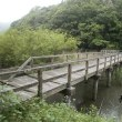 亀山湖 (君津市)ハタキ満水釣行!