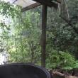 薪のお風呂