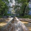 2018.05.10 渋谷区 幡ヶ谷1 幡ヶ谷区立第一公園: 昼なお暗き水の公園