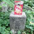 東根山にトホホ…岩手一等三角点研究会チャムス& ノースのキャップ
