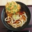 道の駅すばしり (静岡県小山町) 富士山ごうりきうどんを食す
