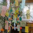 七夕 笹の葉 短冊