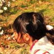 篠窪(しのくぼ)の隣町 開成町 瀬戸屋敷のお雛様は超綺麗 (2018/02/20)