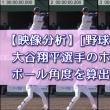 大谷翔平選手のホームラン時の打球角度を算出!おまけあり