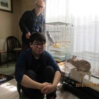 金太郎とふーちゃん 3,12