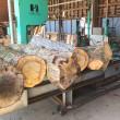 楢の木の製材