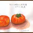 ちょっと四角い庄内柿 まさしく秋色