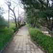 清州城に行ってきました!その5