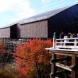 最終日、京都へ
