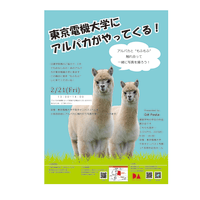 DAFestaのポスター完成!!