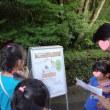 八木山動物公園 夜間開園