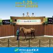 【ジェイエス・冬季繁殖馬セール2019(JS Company Winter Broodmare Sale)】は明日1/23(水)開催!