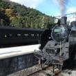 紅葉の時期に訪れる大井川鐵道と沿線撮影ツアー3日間 その3