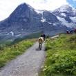 Switzerland  4th(7月29日)ハイキング2【メンリッヒェン→クライネ・シャイディック】