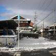 今冬 初雪