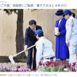 いい加減になさいませ 今上陛下と美智子皇后