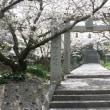 宗像市紹介19「示現神社」