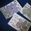 絵手紙 「母が育てた花 今年もさいた」