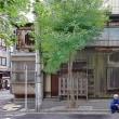 2017.07.29 日本橋人形町: 「旧家」前の一休み、ささやかな安らぎ