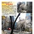 散策 「東京中心部南 381」 日枝神社