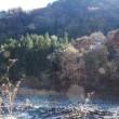 晩秋の河原