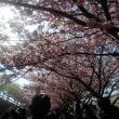 横浜 三浦半島