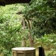 水戸の井戸(4)