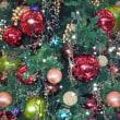 クリスマス感満点☆新潟遊びに行ってきました。