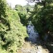 『ゆずの散歩道』散歩(毛呂山町)
