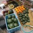 店頭販売の収穫野菜