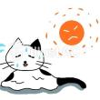 7/12 読書  「人魚の眠る家」  東野圭吾