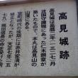 高見城山(兵庫県丹波市)