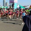 東日本実業団選手権出場のお知らせ