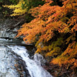みたらい渓谷 ~紅葉めぐり