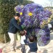 千葉市動物園に行ってきました