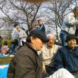合同観桜会2017