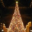 年の瀬 東京ディズニーランドのクリスマス