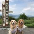 夏の伊豆高原旅行 その3