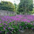 花々の公園の巻