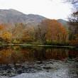 紅葉の時季です。 刈込池へ
