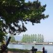 琵琶湖岸(膳所)を散策