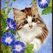 色鉛筆画368 (朝顔と子猫)