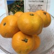 横須賀 農産物直売所 すかなごっそ