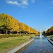 昭和記念公園の紅葉 2018~晴れの日